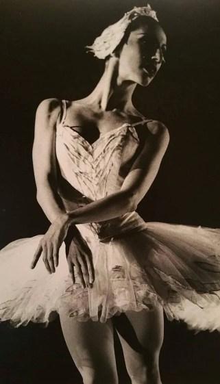 Monica Vaglietti