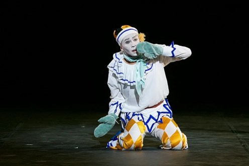PETRUSHKA, Performed by Anton Lukovkin by Dasa Wharton