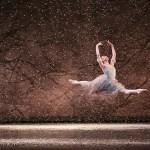 The Nutcracker, Birmingham Royal Ballet, photos by Dasa Wharton 05