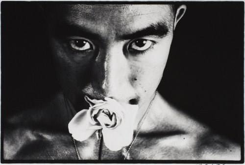 One of Eikoh Hosoe's photographs of Yukio Mishima for the series Ordeal by Roses, 1961