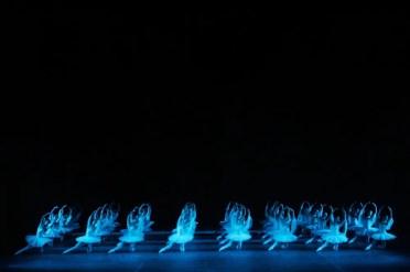 Shadows In La Bayadére, Photo By Mikhail Logvinov, 2005