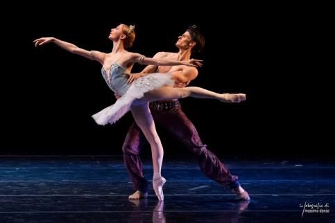 Iana Salenko and Marian Walter, photo by Massimo Danza
