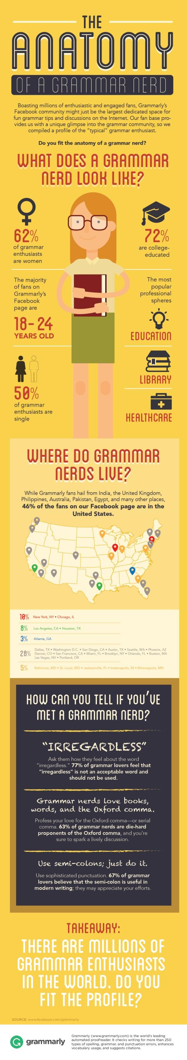 Anatomy of a Grammar Nerd Infographic