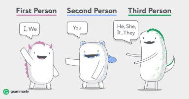types of 3rd person