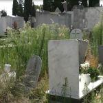 Grammichele: Richiesta di manutenzione presso il Civico Cimitero.