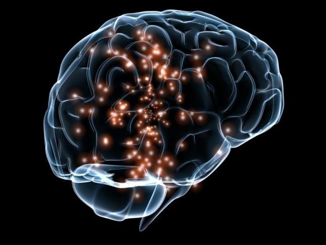 cerebro-trauma