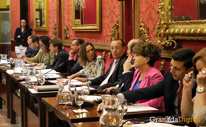 Pleno-ordinario-mayo-5---Cristina-Chaparro
