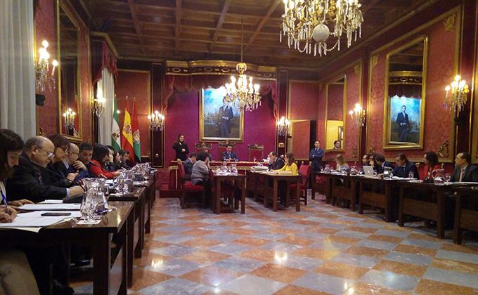 Pleno ayuntamiento granada 240217
