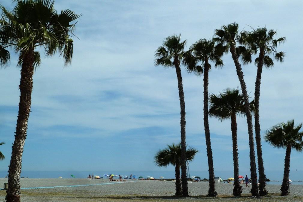 Playa Costa Tropical