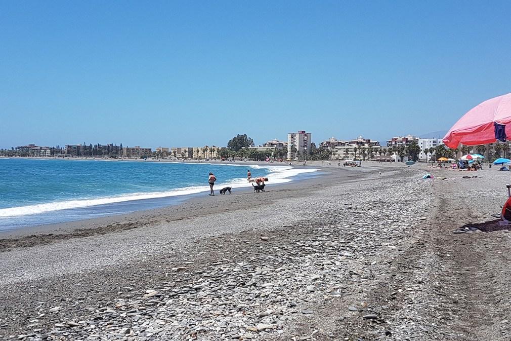 playa perros El Cable Motril