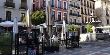 bares por la zona de plaza nueva en granada