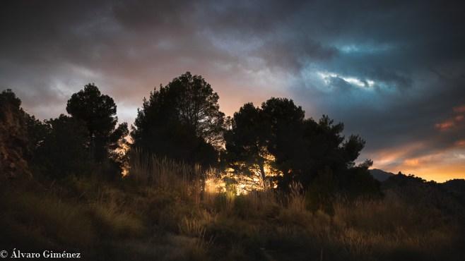 zona de Gorafe Starlight