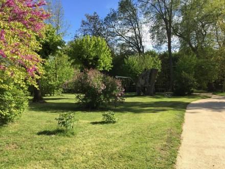 Dans le parc de Grand Bouy, l'arbre de Judée en fleurs, une allée de tilleuls, des lilas et une balançoire