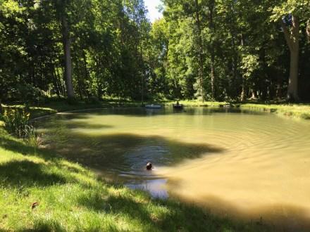 Dans le parc de Grand Bouy, l'étang entouré d'arbres centenaires avec ponton et barque