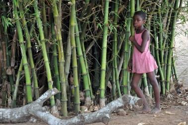Village bord du lac Togo F13_2197