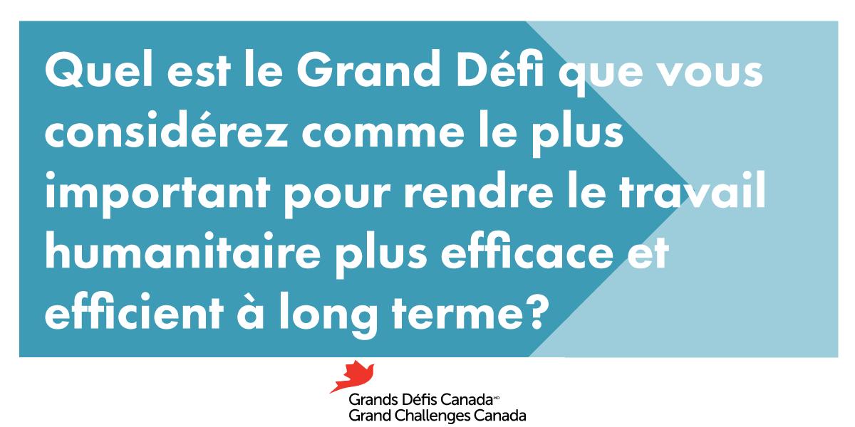 Quel est le Grand Défi que vous considérez comme le plus important pour rendre le travail humanitaire plus efficace et efficient à long terme?