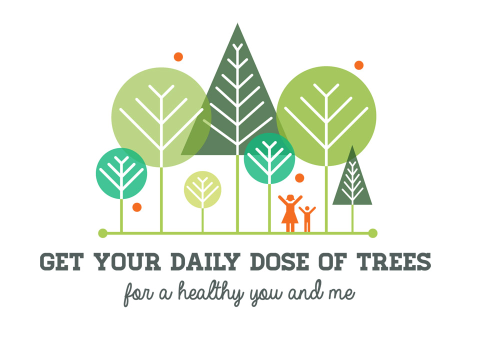 Get Your Daily Dose of Trees