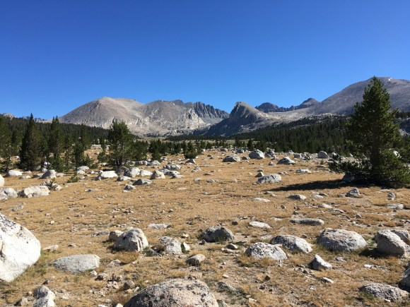 Mount Whitney (from the west), as seen from Lower Crabtree Meadow. Photo credit: Brien Crothers