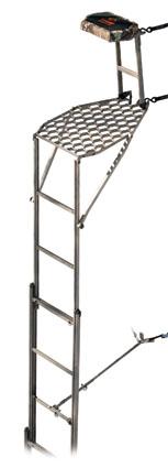 leverage speed ladder
