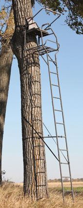 sniper intimidator ladder stand