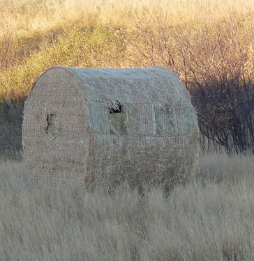 blind ambition hay bale