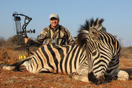 africa zebra hunting