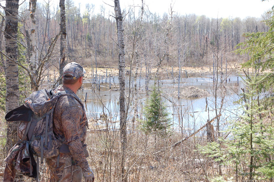 boundary waters hunting