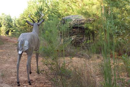 deer blind hunting