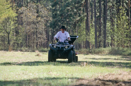 small large food plot
