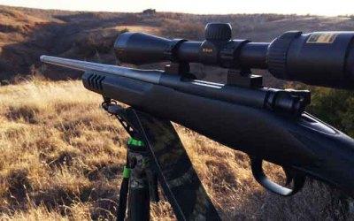 Oklahoma Coyotes with Nikon scope