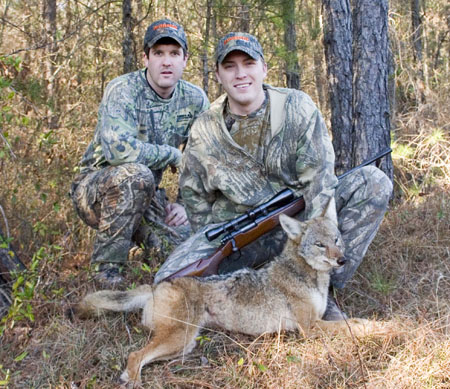 Coyote hunting partner