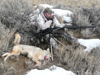 coyote hunting shotgun