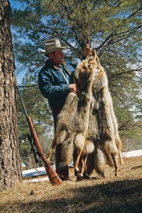 preparing furs