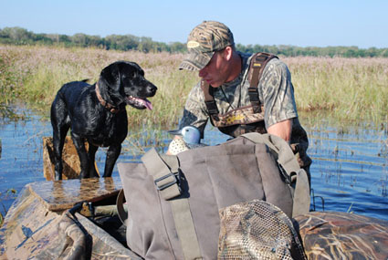 teal hunting tactic