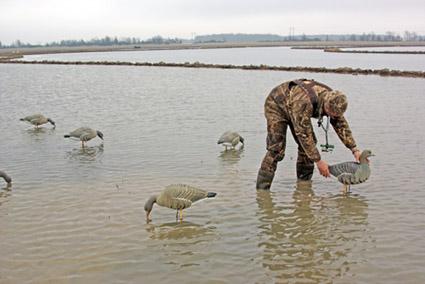 goose hunting tip