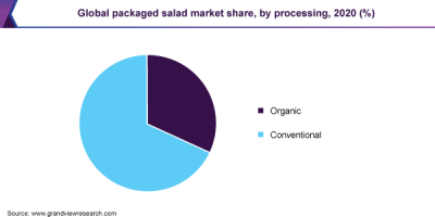 Global packaged salad market share, by distribution channel, 2019 (%)