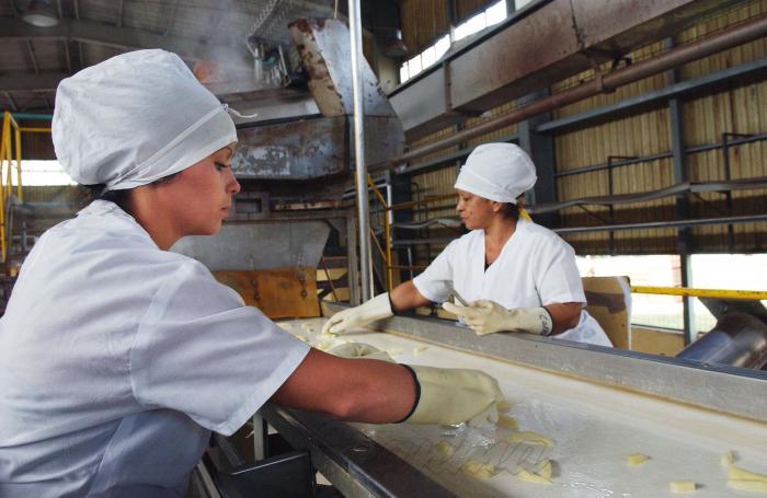 Empresa Industrial de Cítricos Ceballos en Ciego de Avila.         Papa precocida de forma industrial.