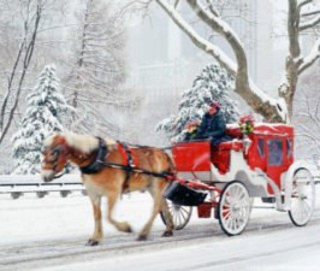 Free Christmas Central Park New York Wallpaper_x_