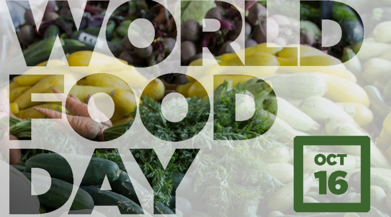 Six Grants to Combat Food Insecurity in Honor of World Food Day