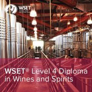 5 Reasons to Start WSET Diploma Now