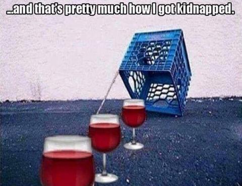 funny wine memes jokes humor (7)