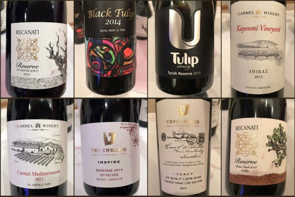 Israel Wine Master Class Beijing China Tulip Carmen Teperberg Recanati
