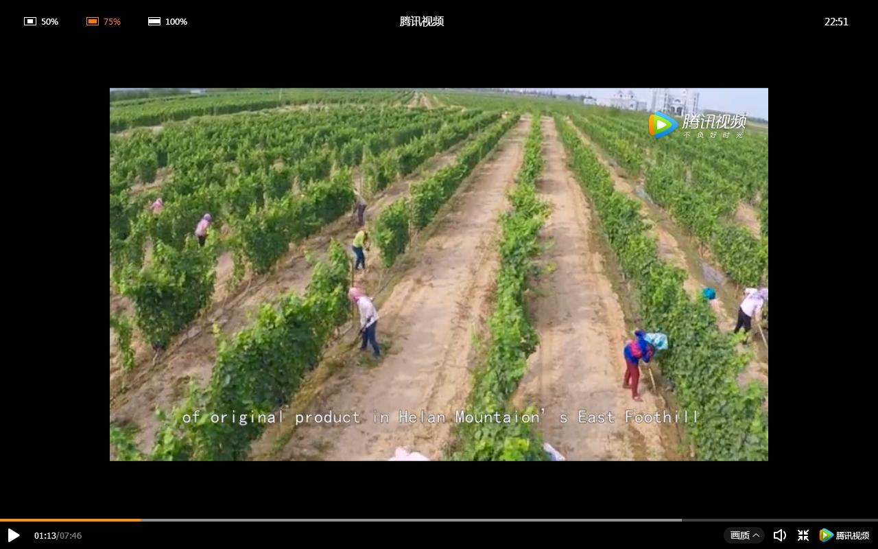 qingtongxia video screen grab