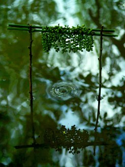 land_art_photograpy_ludovic_fesson_13