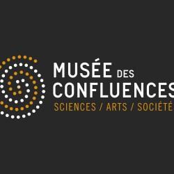 identité globale musée des confluences lyon paris