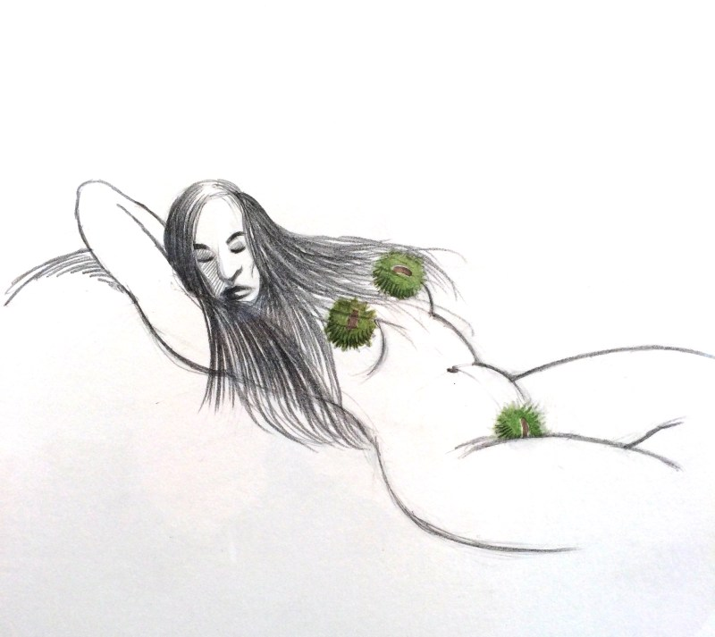 dessin-coquin-peter-gut-3
