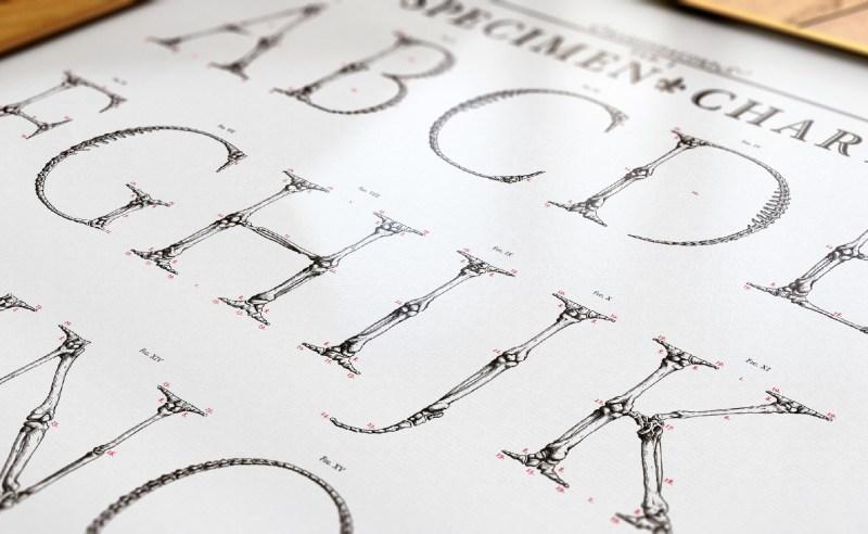 Garamond Corpvs, un alphabet qui a du corps