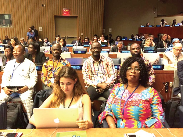 A section of  participants in the 2019 High Level Political Forum (HLPF) at the United Nations