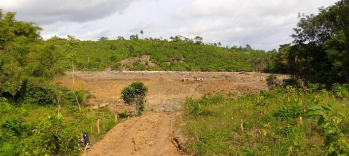 2 Chinese nationals arrested for illegal mining in forest 5