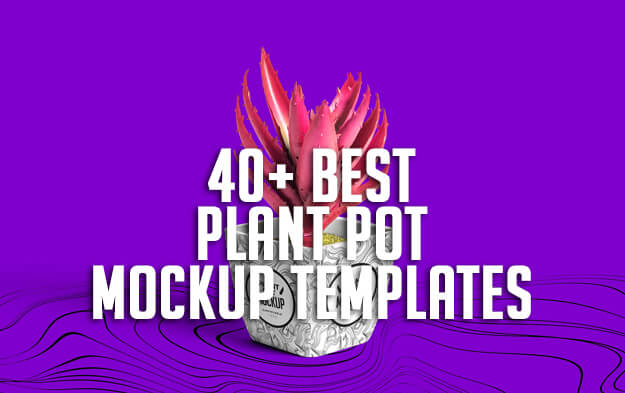40+ Best Plant Pot Mockup Templates